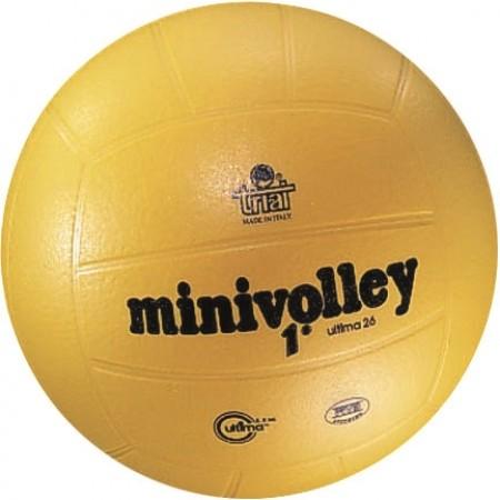 Ballon de volley Ultima
