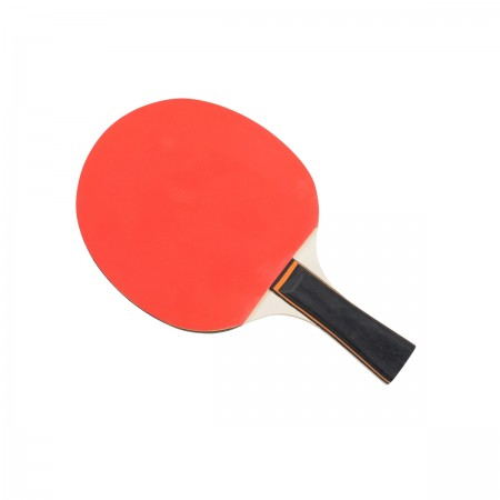 Raquette de tennis de table Megaform Bronze