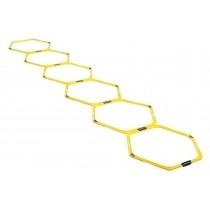 Kit d'anneaux d'agilité hexagonaux
