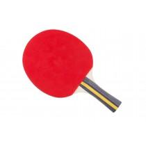 Raquette tennis de table Megaform Silver