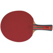 Raquette tennis de table Megaform Gold