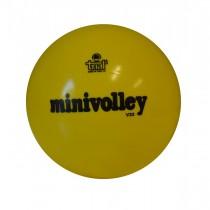 Ballon de volley Trial Classico