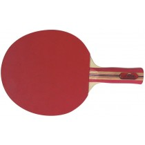 Raquette tennis de table Megaform Silver