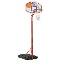DETROIT basketdoel
