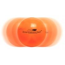ExerWeight Ball